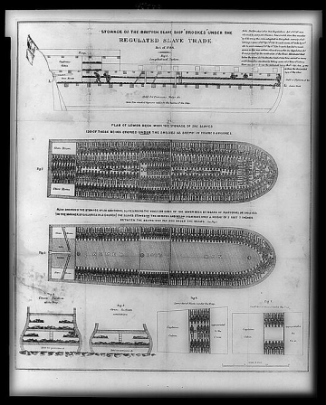 A British blueprint of a slave ship, demonstrating how they were to pack as many Africans as possible into a ship for the nightmare known as the 'Middle Passage'.