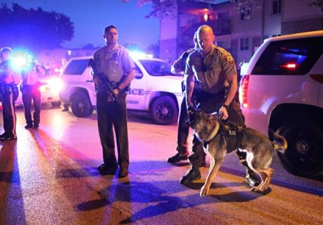 Ferguson police bring along their viciously-trained canines, just in case the peaceful protesters get to rowdy.